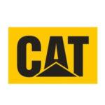 customer_cat